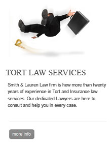 tort law services